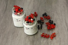 Chia_puding_1